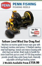 Penn Fathom Level Wind Star Drag Reel