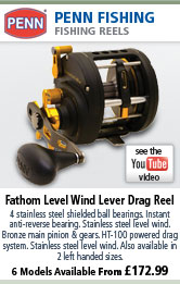 Penn Fathom Level Wind Lever Drag Reel