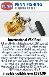 Penn International VSX Reel