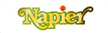 Napier Logo