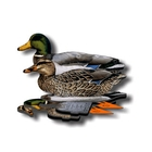 NRA Mallard Fold Up Decoy (FUD 6 Pack)