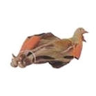 Sportplast Easy Fold Wood Pigeon Decoy