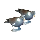 Sportplast Pigeon Decoy with Legs