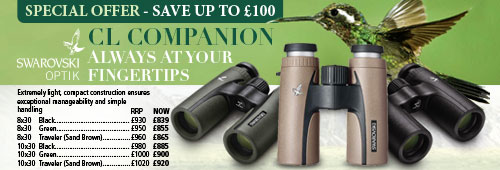 Swarovski CL Companion Special Offer