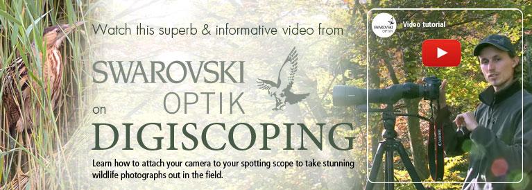 Swarovski Digiscoping Tutorial Video