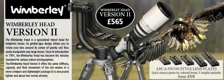 Wimberley Head - Version II