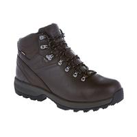 Berghaus Explorer Ridge Plus GTX Walking Boots (Mens)