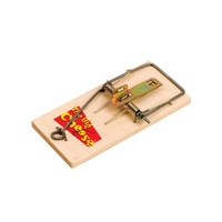 Big Cheese Baited RTU Mouse Trap (2 Pack)