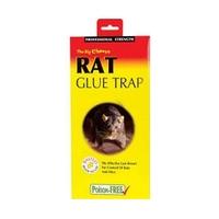 Big Cheese Rat Glue Trap
