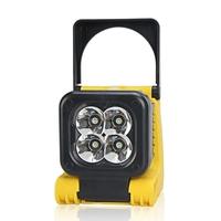 Clulite FL19 Mini LED Floodlight