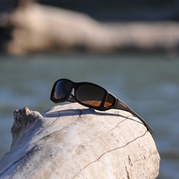 Cocoons Wide Line Polarized Sunglasses