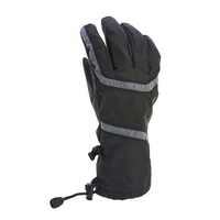 Extremities All Season Trekking Glove