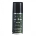 Image of Le Chameau Rubber Boot Spray - 80ml