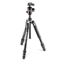 Manfrotto MKBFRTA4GT-BH Befree GT Aluminum Tripod Twist Lock With Ball Head