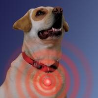 Nite Ize Spot Lit - LED Collar Light - White LED