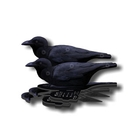 Image of NRA Crow Fold Up Decoy (FUD 6 Pack)