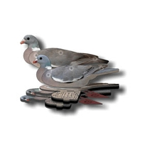 Image of NRA Wood Pigeon Fold Up Decoy (FUD 6 Pack)