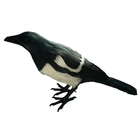 Riverside Outdoor Full Feather Calling Magpie