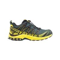 Salomon XA PRO 3D GTX Walking Shoes (Men's)
