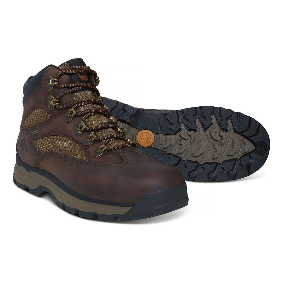 c67c1029007 Timberland Chocorua Trail 2 Mid GTX Walking Boots (Men's) - Dark Brown/Green