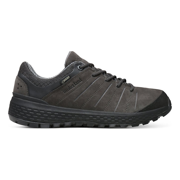 Timberland Parker Ridge Low GTX Walking Shoes (Men's) Dark Grey Suede