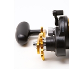 Image of Daiwa BG20H Saltist Black Gold Super High Speed Reel