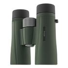 Image of Kowa BD II 8x42 XD Wide Angle Binoculars - Green